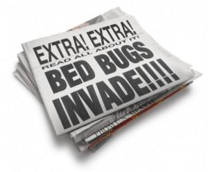 beg bugs newspaper